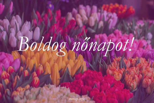 boldog nőnapot tulipánok